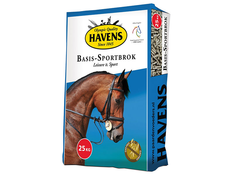 basissportbrok-havens